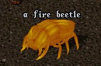 Fire_Beetle.jpg